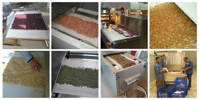 Continuous Microwave Sterilization Machine For Red Chili Pepper Powder Spice Powder 2