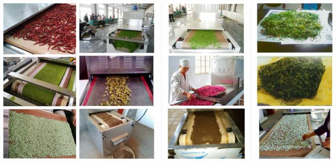 Continuous Microwave Sterilization Machine For Red Chili Pepper Powder Spice Powder 3